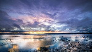 landscape,seu;,rivage
