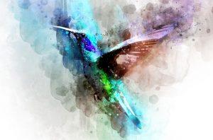 Bird,imaginez