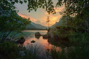 nature, simplement,present