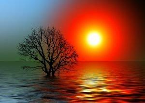 Sun,effet,reactions