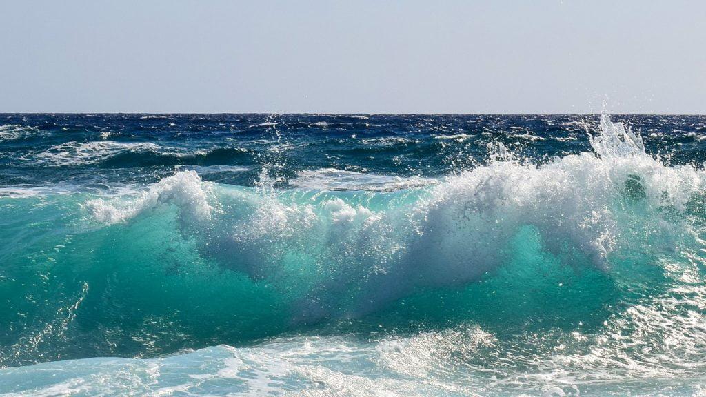wave,etat,felicite