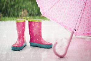 rain, garder, focus